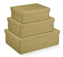 Cardboard box Havanna : Gift boxes