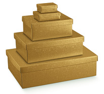 Gold Cardboard box : Gift boxes