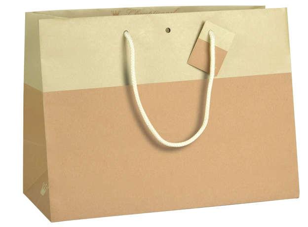 Sac Bicolore Chic MASTIC : Bags